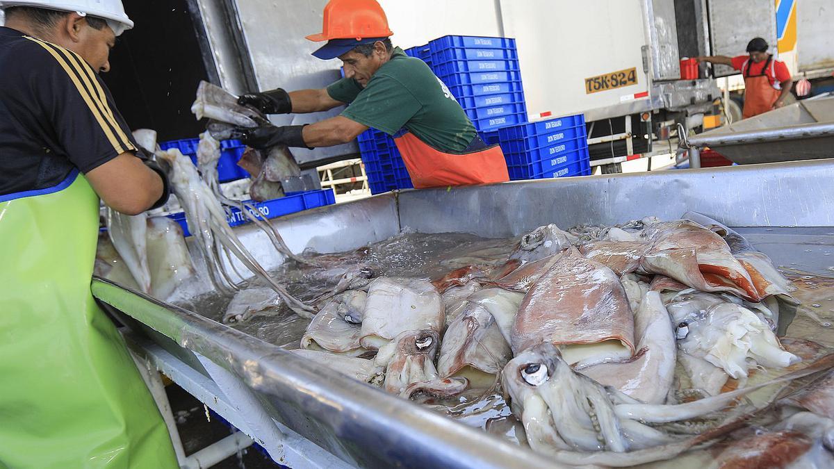 Perú busca nuevos importadores de pescado en España, su cuarto mercado mundial